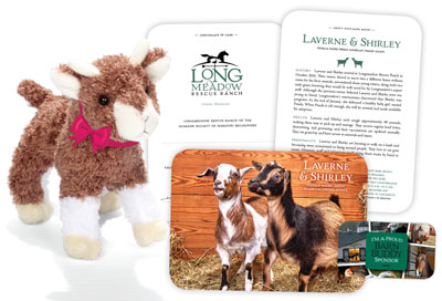 Barn Buddy sponsorship package at Longmeadow Rescue Ranch